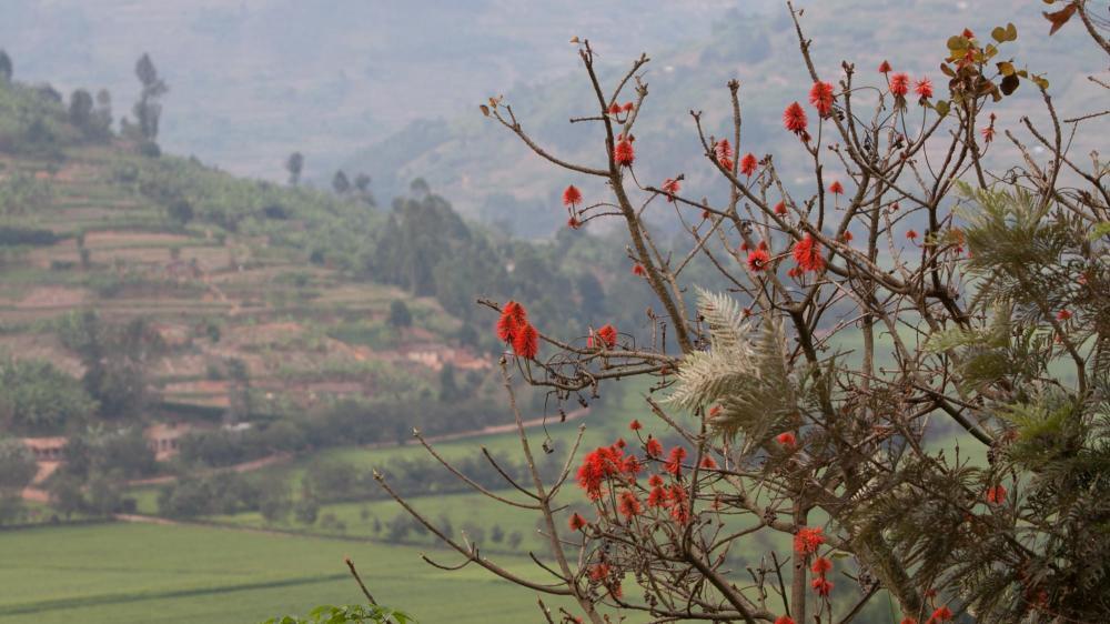Delivering Eye Care in Rwanda